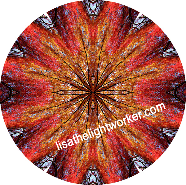 ** Fire Tree Mandala **